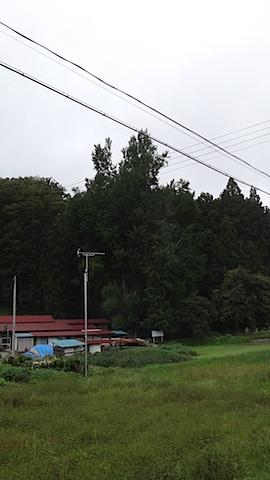 DSC08288.jpg