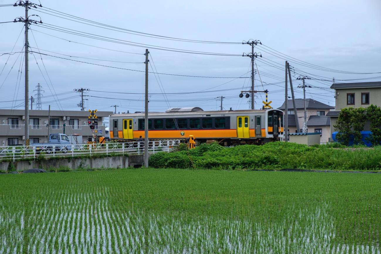 DSCF0164 1
