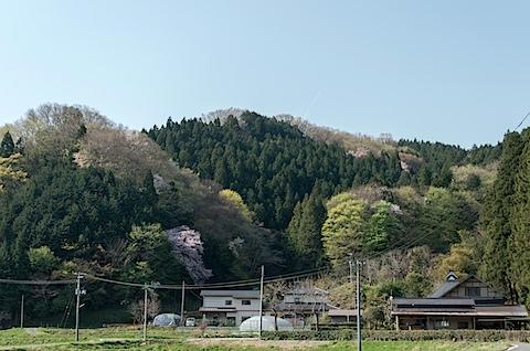 DSC_0402.jpg