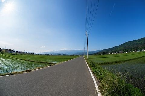 DSC_6045-2.jpg
