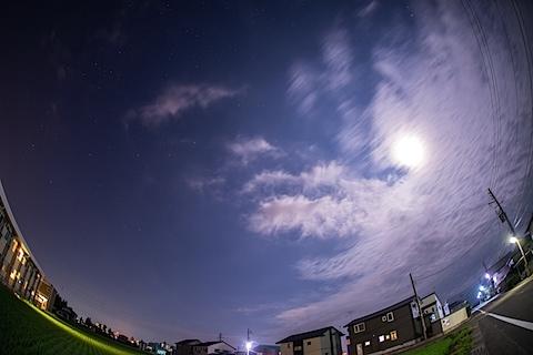 DSC_7531.jpg