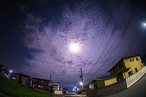 DSC_7535.jpg