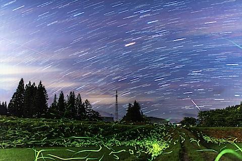 firefly&stars8.jpg