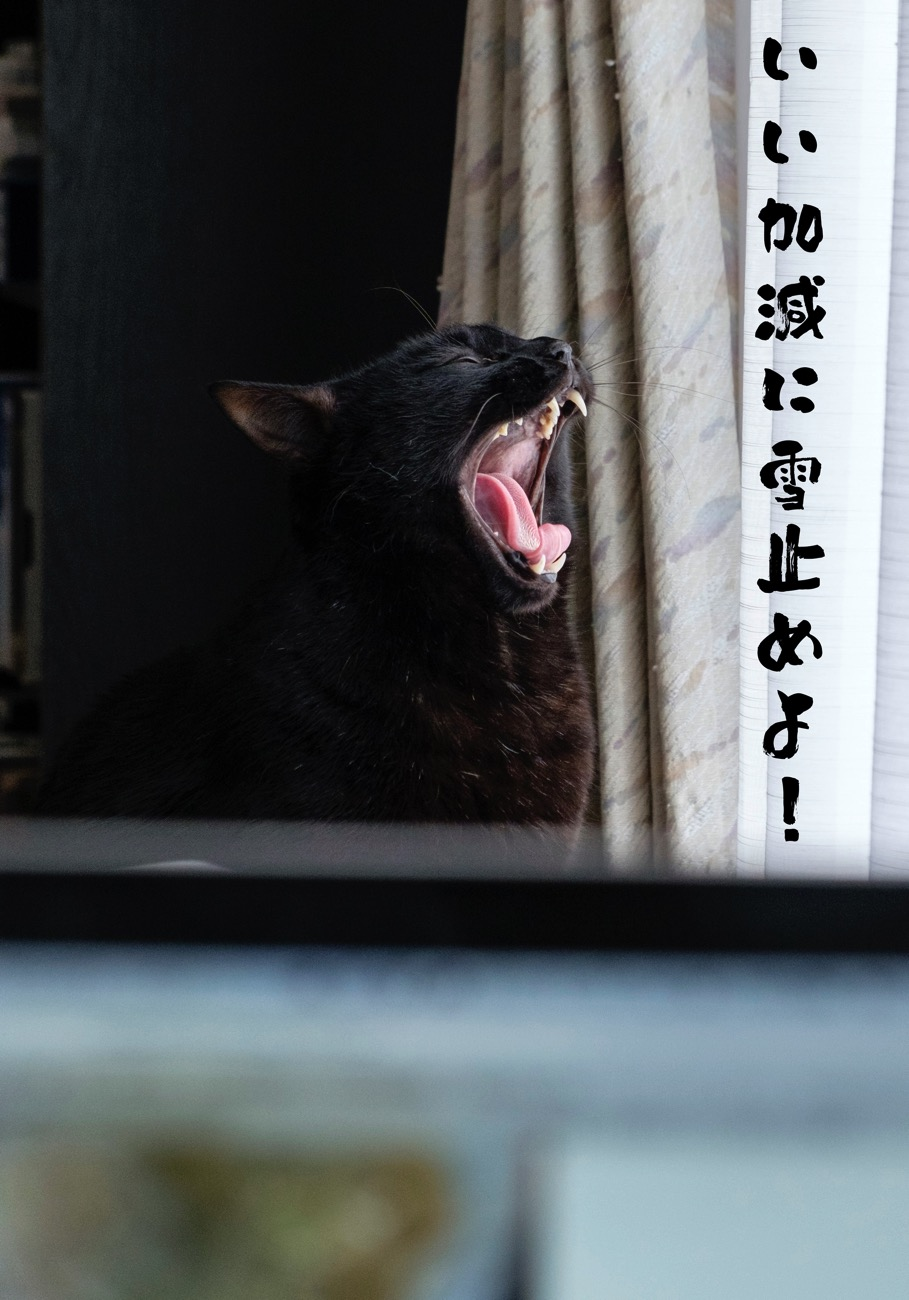 Kurosuke2