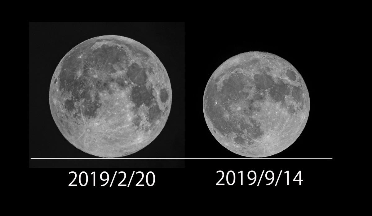 2019max min moon